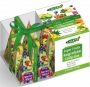 Pyramid Box Super Fruit 2g x 12ks